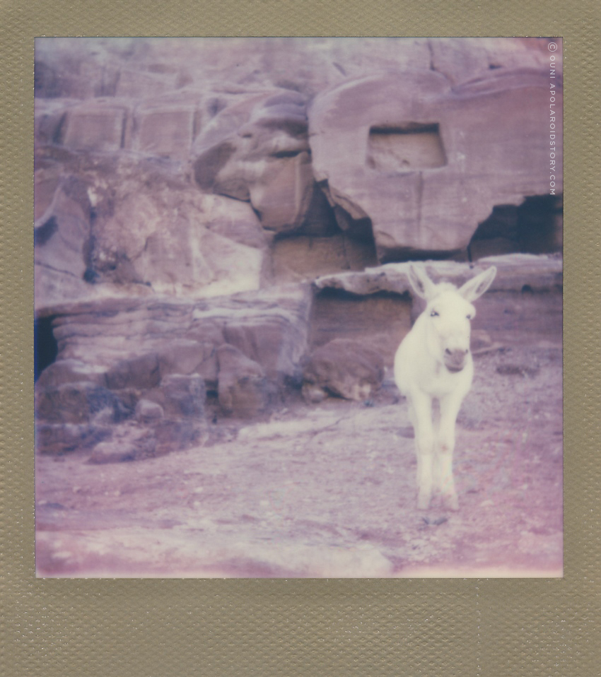 A POLAROID STORY TRAVEL